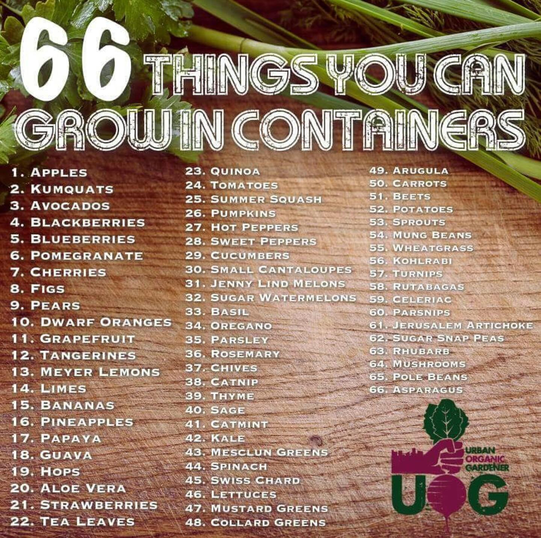 66-ideas