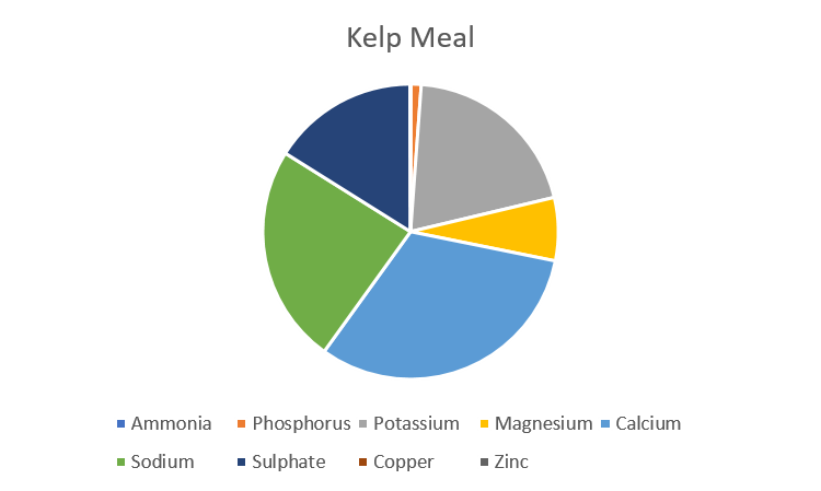 kelp-pie