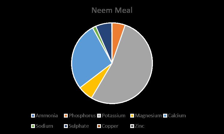 neem-pie